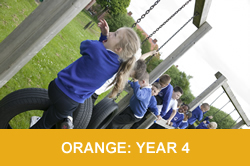 orange y4